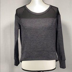 Champion Cropped Fleece lined boxy sweatshirt gray